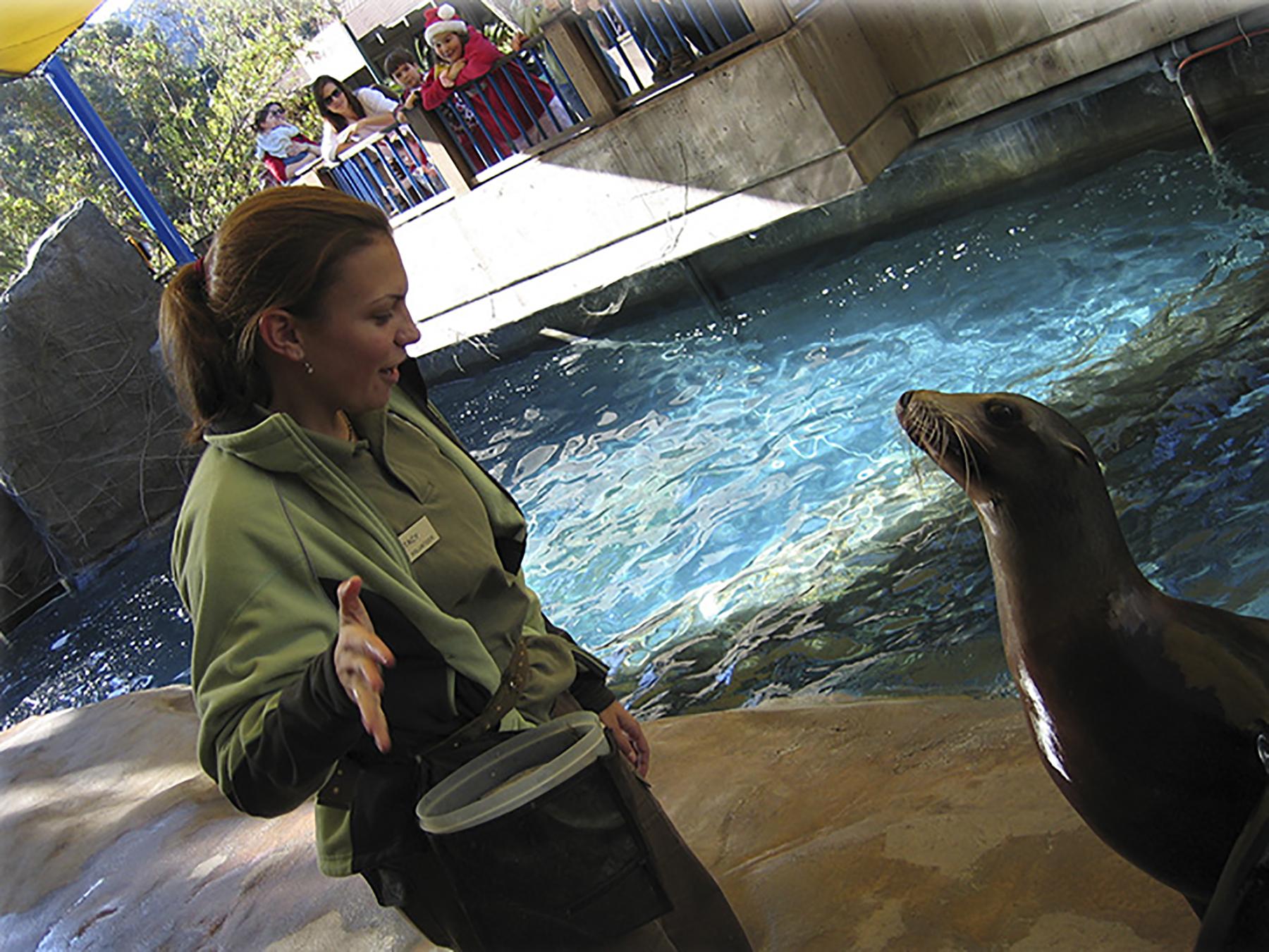 myscicomm_SAKruegerHadfield_sea lions.jpg