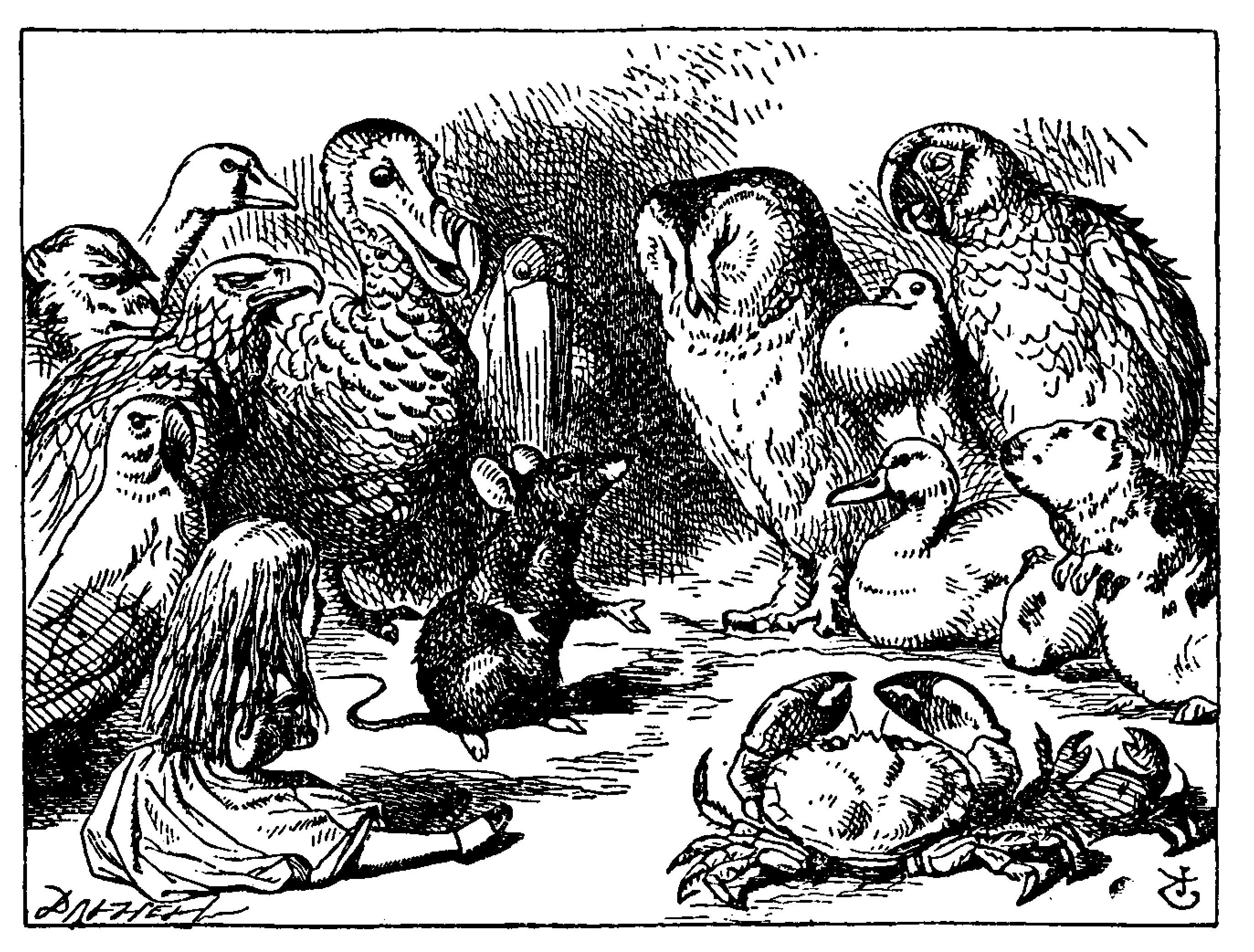 Black and white drawing of many animals (parrot, eagle, monkey, goose, dodo, pelican, owl, dove, duck, ground squirrel, crab) and young girl (Alice in Wonderland) listening to a mouse tell a story