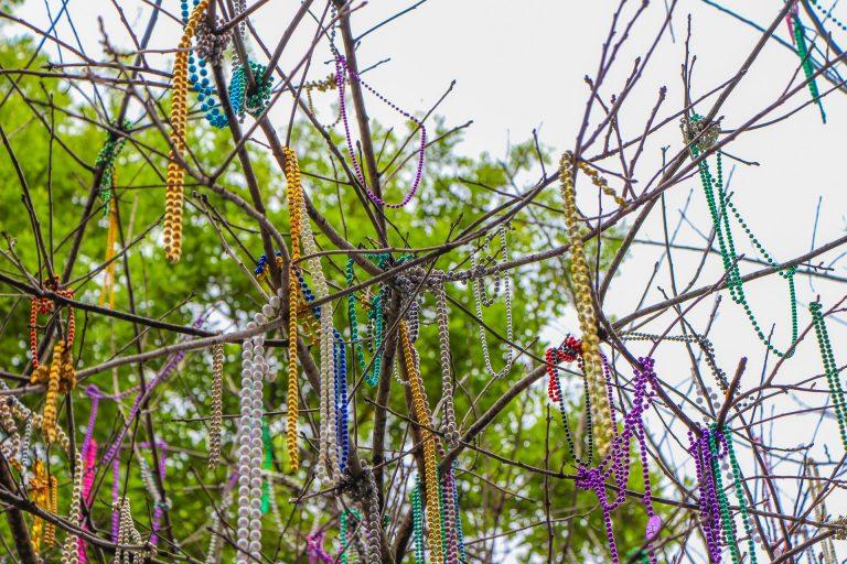 Photo of dozens of Mardi Gras necklaces strung on a tree