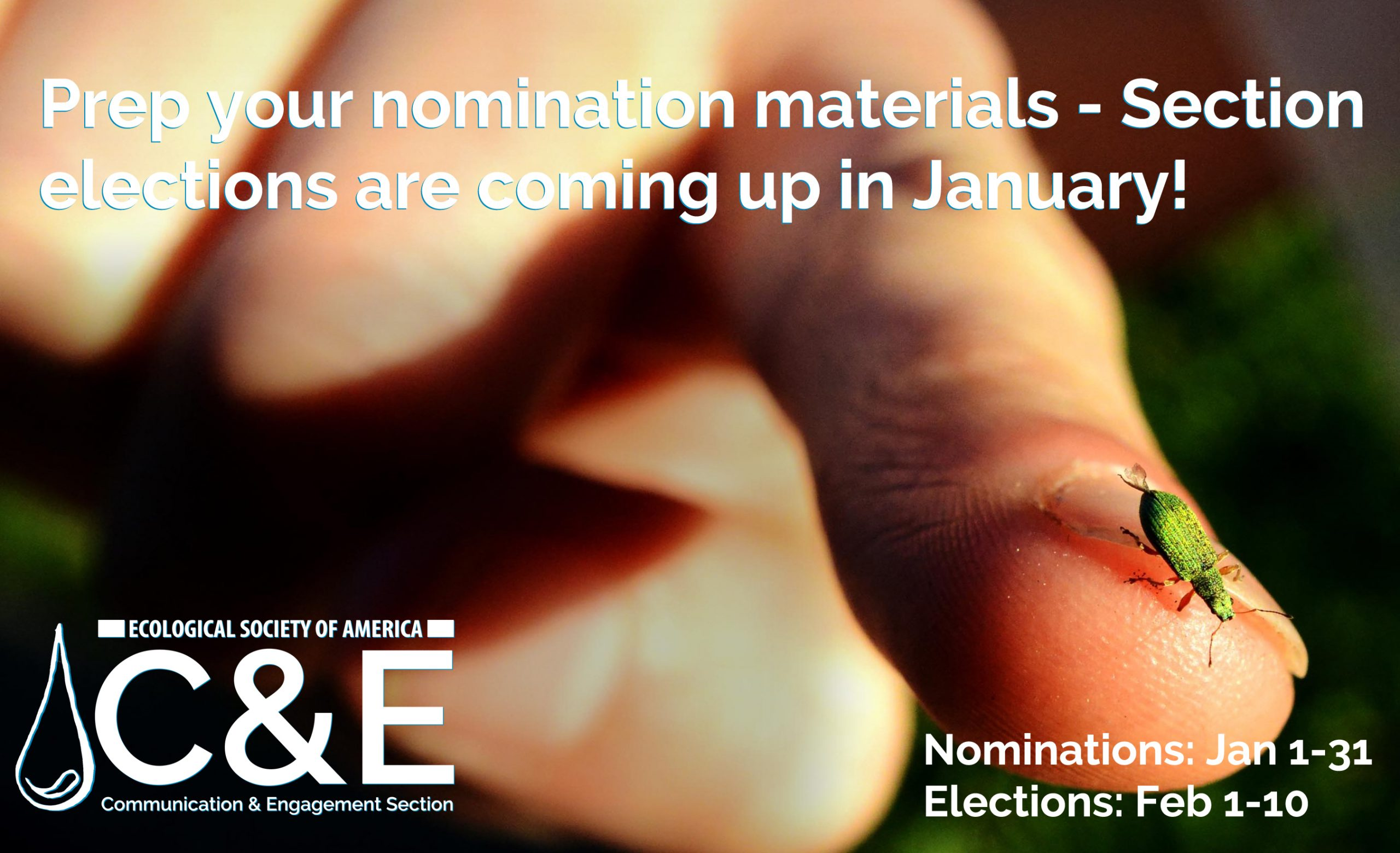 Close-up of a hand, with index finger pointing to camera. On that fingernail perches a small green insect. Text reads: Prep your nomination materials - Section elections are coming up in January. Nominations: Jan 1-31. Elections: Feb 1-10.