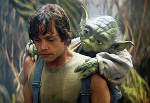 Luke Skywalker needed guidance and training to become a Jedi. Yoda needed patience and time to impart not only skills, but confidence and independence to his mentee.
