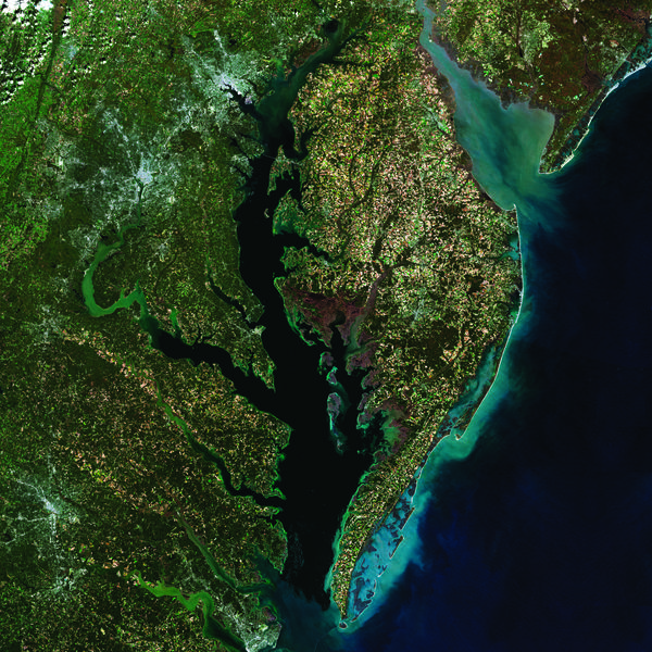 A true color composite image of Chesapeake Bay, created from Provisional Surface Reflectance data collected by the USGS satellite Landsat 8 in the fall of 2014. Sediment suspended in the water along the coast and in the rivers of the Chesapeake watershed appears light blue or green. Baltimore, Md., and Washington, D.C., and the I95 corridor are bright grey stars to the left of the Bay. Credit, US Geological Survey.
