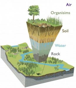 Modified from Chorover, J., R. Kretzschmar, F. Garcia-Pichel, and D. L. Sparks. (2007). Soil biogeochemical processes in the critical zone. Elements 3, 321-326. (artwork by R. Kindlimann).