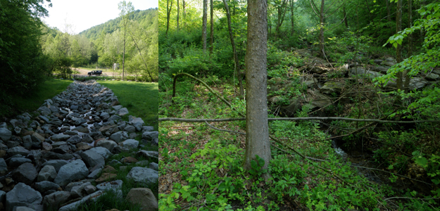 "Clearly defining 'restoration' in law. Though mandates like the Clean Water Act have been powerful tools for instituting environmental protections in the United States, loose legal definitions of ""restoration"" mean that few mitigation projects install whole, functioning, and self-sustaining ecosystems. An Appalachian project with the narrow goal of restoring stream flow after mountaintop mining, for example, (left) delivers few of the resources of the natural ecosystem that was lost (right). Likewise, programs aimed at recovery of endangered species do not necessarily prioritize functional ecosystem recovery. Palmer and Ruhl examine the scientific and (U.S.) legal bases for ecological restoration and how the two may be more fruitfully unified in ""Aligning restoration science and the law to sustain ecological infrastructure for the future,"" on page 512 of this issue. Photo credit: E Bernhardt."