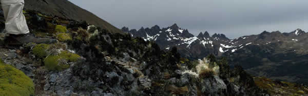 A mountian vista with snow caps on top.