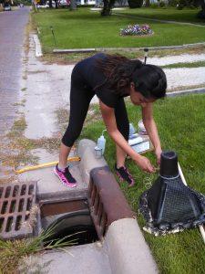 Graduate student Noor Malik sets up a leaf detritus experiment in a storm drain in Paxton, Illinois. Credit, Allison Gardner.
