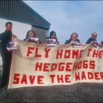 FEE1471 Protesters demonstrate their opposition to the lethal control of European hedgehogs (Erinaceus europaeus) on the islands of Uist, Scotland. © H Warwick