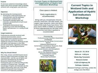 Flyer download in PDF format