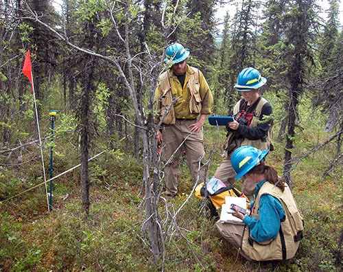 WLF Using Technology in the Field - Ecologists Ask: Should We Be More Transparent with Data?