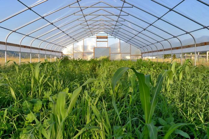"USDA NRCS ""seasonal high tunnel"""