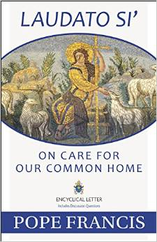 150629 papal encyclical on care for our common home cover