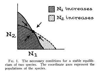 Stable equilibrium. Figure 1 from R.H. MacArthur (1958) Population Ecology of Some Warblers of Northeastern Coniferous Forests. Ecology 39(4), 599-619.