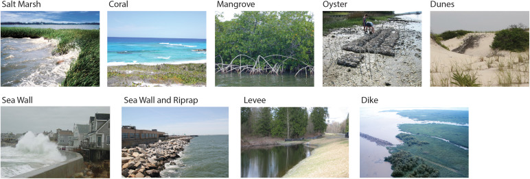 examples of natural and build coasts from figure 1 of Sutton-Grier and colleagues' award winning paper