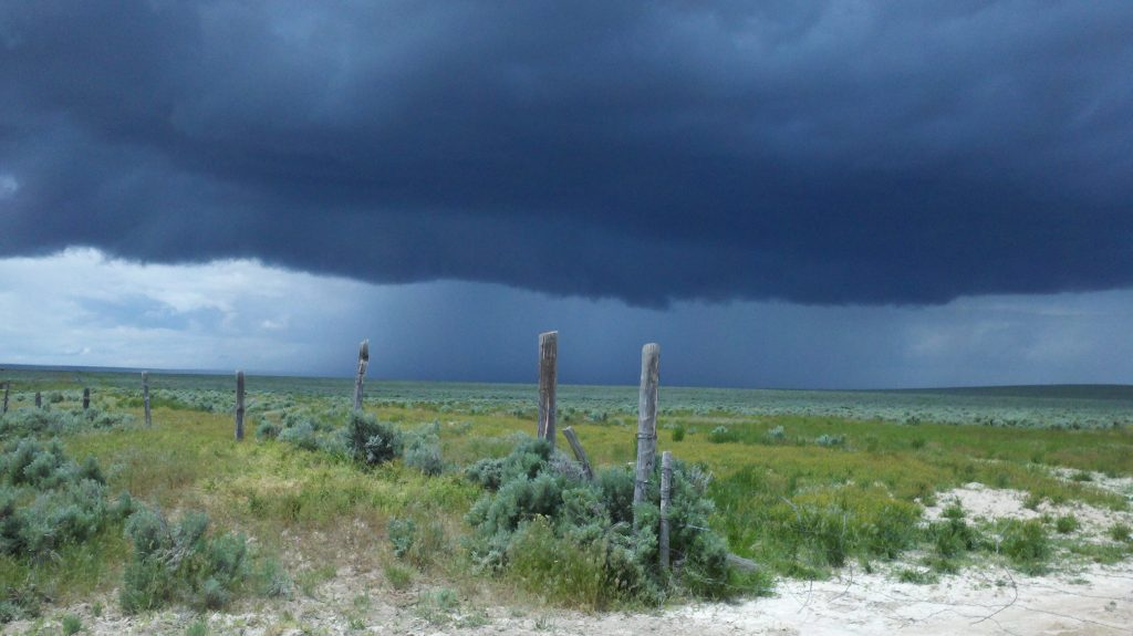 An early summer storm passes over sagebrush country near Hollister, Idaho. The area has not burned within the 20 year time frame of the study. It features mature sagebrush, but also non-native cheatgrass, mustard, and crested wheatgrass, and barbed-wire fencing, which provides perches for predatory birds. Non-native plants and human infrastructure diminish the quality of the habitat for sage grouse. Credit, Robert Arkle, June 2011.