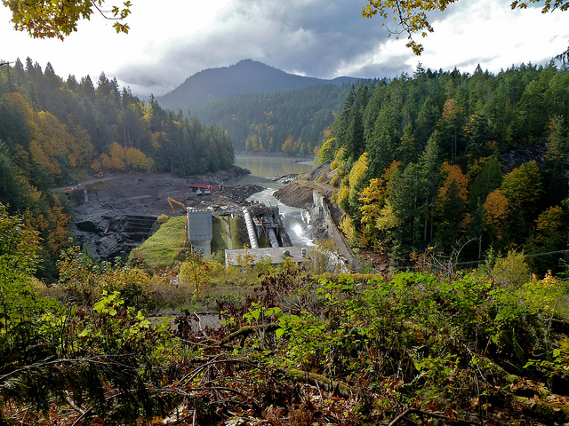 The Elwha River pours through the remains of the Elwha Dam in Washington State's Olympic National Park on October 23, 2011. The former reservoir beds have recovered quickly and salmon and steelhead have returned after demolition of the two dams on the river. Credit Kate Benkert, USFWS.