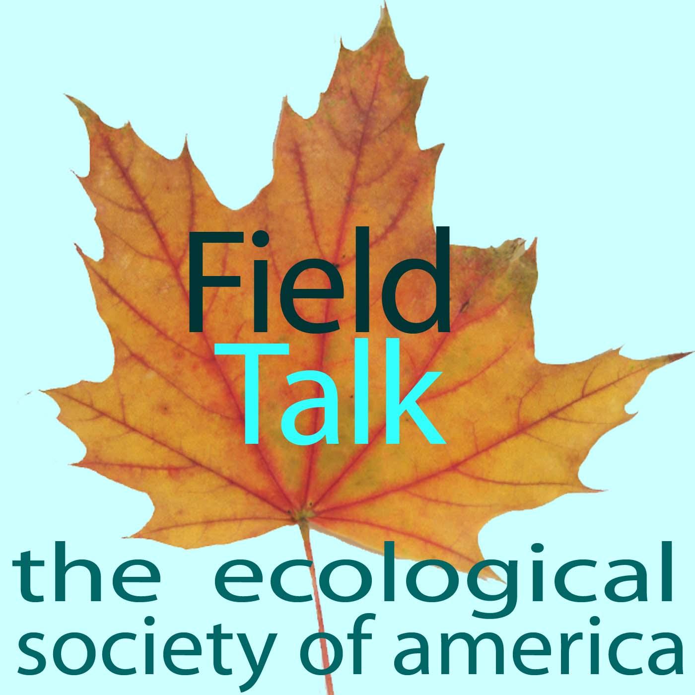 Listen to Field Talk