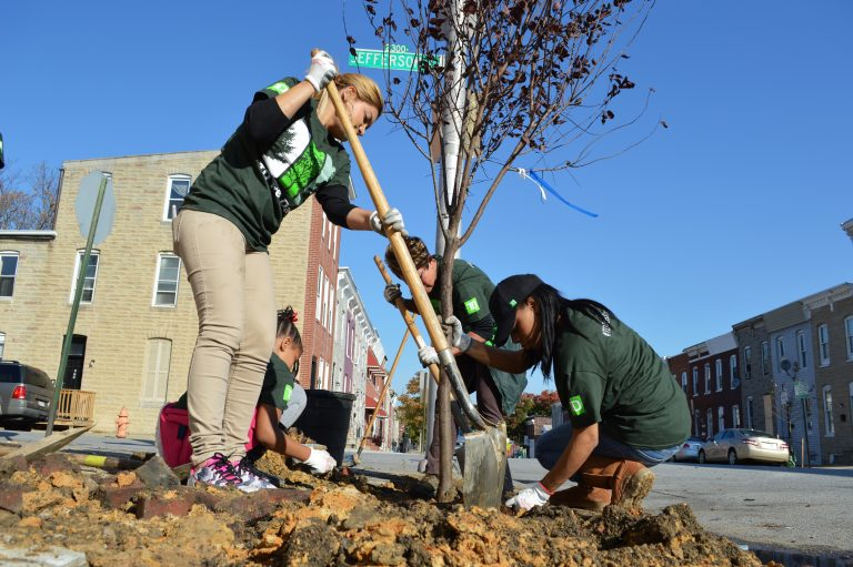 Parks & People volunteers plant trees on a street in Baltimore. Credit, Parks & People Foundation.