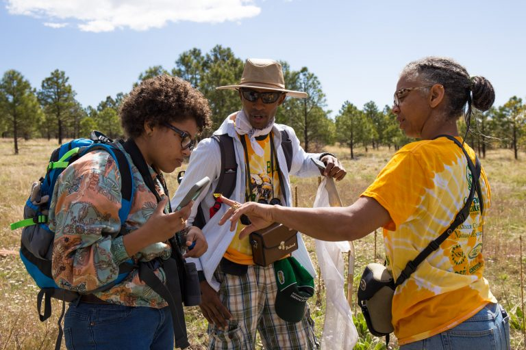 """Gillian Bowser samples pollinators with students in the 3dNaturalists program during the National Park Service's Centennial Bioblitz in Bandelier National Park, in 2016. Students worked in """"pollinator hotshot teams"""" to identify pollinators and upload photos and information to an online database using a citizen science app called iNaturalist. Credit: Carrie Lederer"""