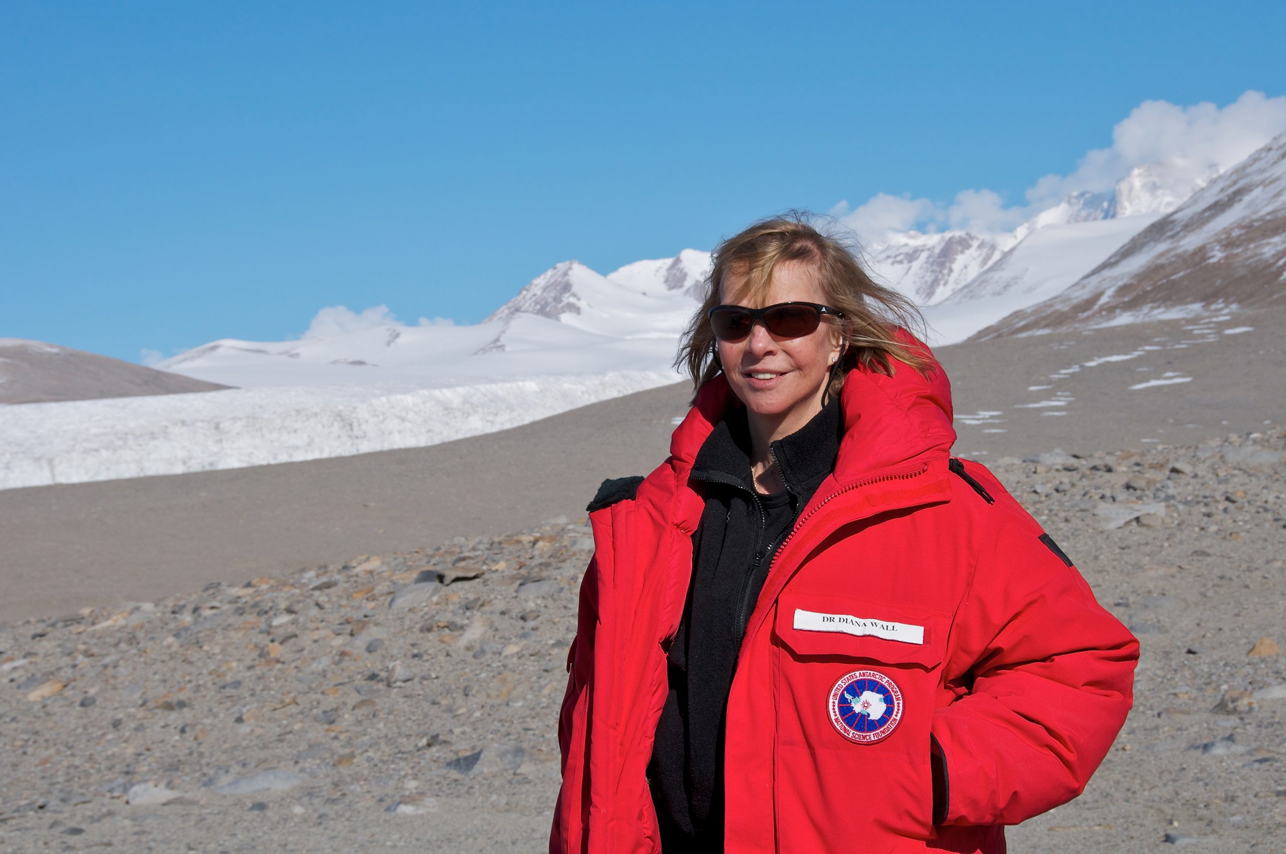 The Ecological Society of America's 2017 Eminent Ecologist, Diana Wall, takes a break from sampling soil biodiversity along an elevational transect as part of the McMurdo Dry Valley LTER project in Miers Valley, Antarctica (78°5.326 S, 163°46.382 E), in January 2013. Photo credit: Martijn Vandegehuchte