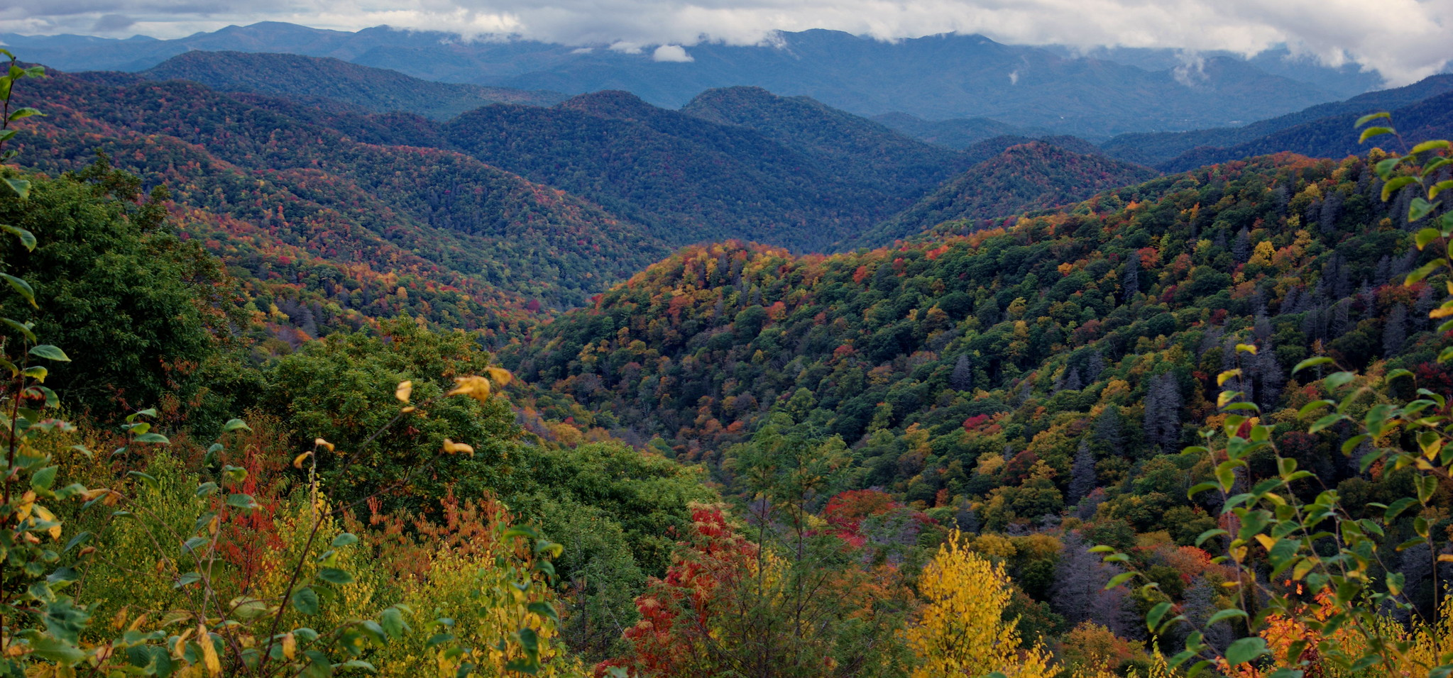 Picture of Great Smokey Mountains National Park in fall.