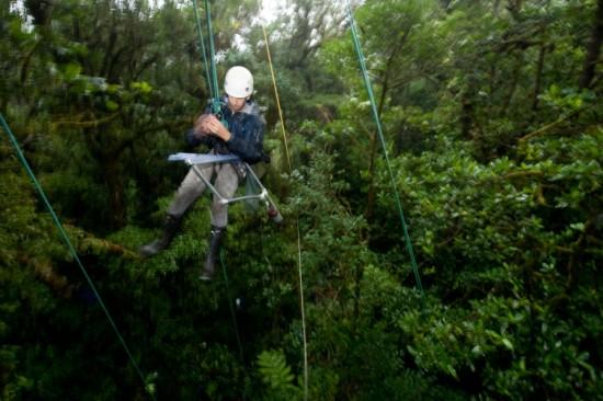 Greg Goldsmith, tropical plant ecologist from the University of California, Berkeley