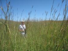 big grass & jesse 2008