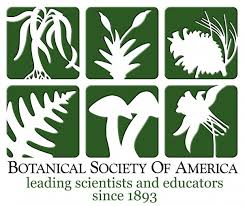 Botanical society of america logo features different plant shapes.
