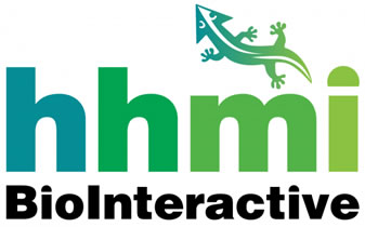 HHMI Biointeractive official logo.