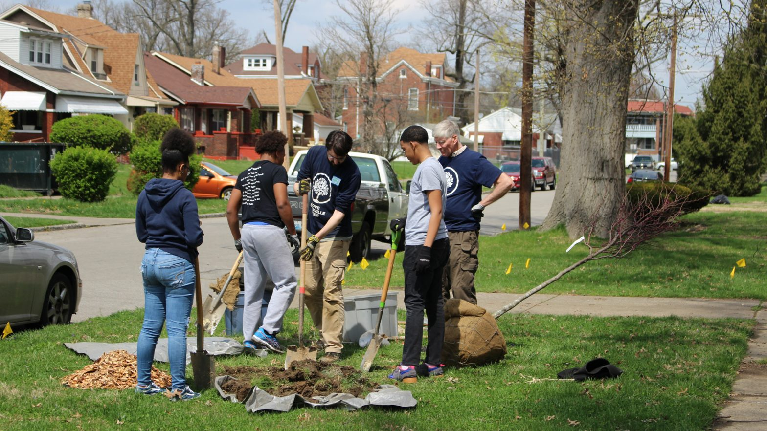 A group plants trees.