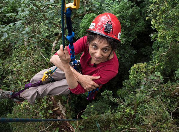 Nalini Nadkarni climbing in a forest from an aerial angle. She stops, suspended in air, to smile for this photo.