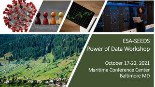 Power of Data workshop