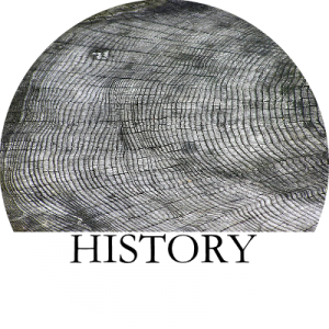 History B Circle