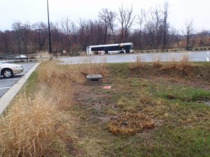 Bioretention Stormwater Management