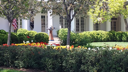 The president's podium with flowers in the foreground and trees overhead.