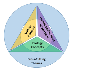 4DEE diagram 300x241 - Ecology Education