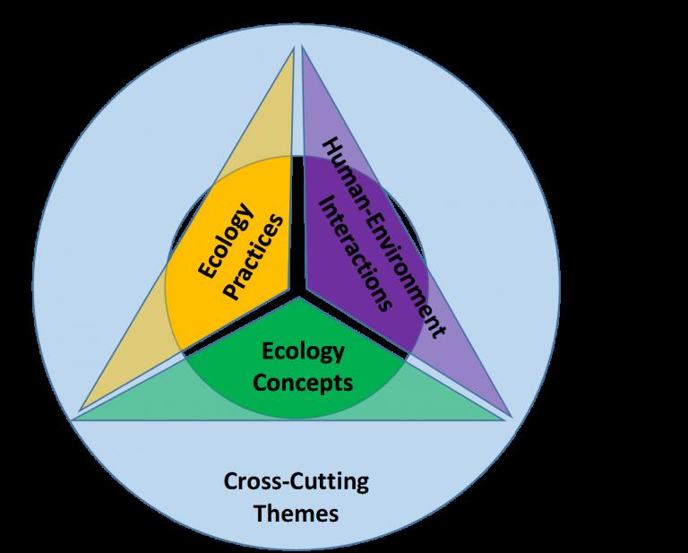 4DEE diagram - ESA Endorses Four-Dimensional Ecology Education Framework