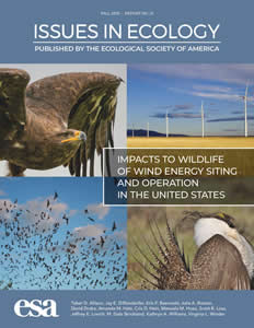 Issues in Ecology #21 Cover Image