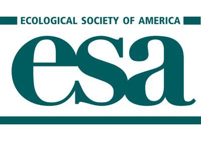 Official logo of the ESA